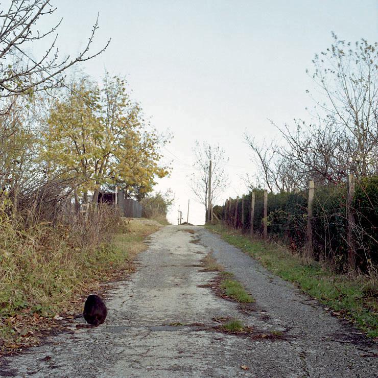 07- Mihailo Vasiljević, Mačka, 2005, iz serije fotografija Srpska mitologija