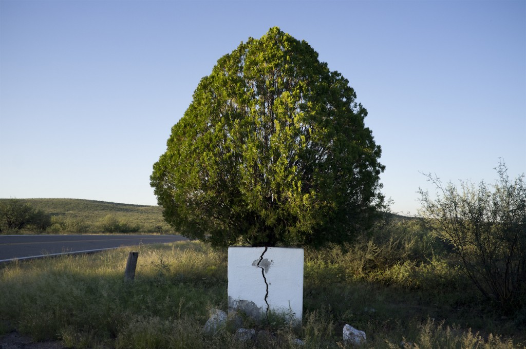 Nidaa Aboulhosn, Untitled #4, 2012, from the series To   Build Itself Ruin or Wonder