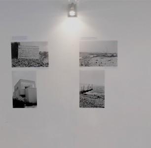 Shira Wolfe / Tracing Darwish