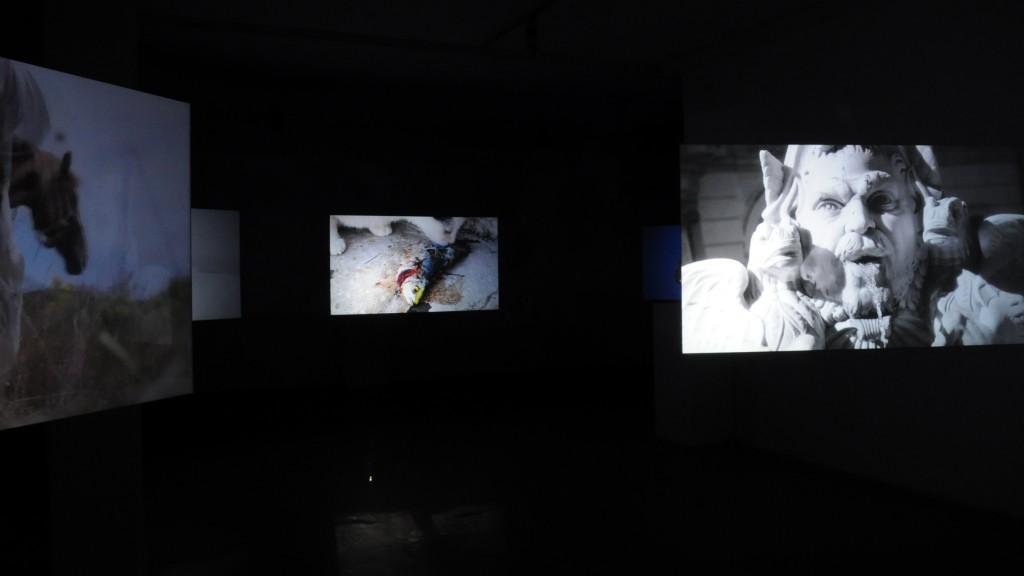 Svetlana Volic, NON FINITO, Pasaž 2: Gde prestaje svet, 2017, Salon Muzeja savremene umetnosti Beograd.